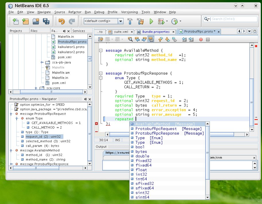 Interview: Google Protocol Buffer Plugin for NetBeans IDE